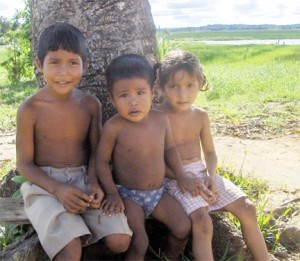 Amerindian children: How secure is their future?