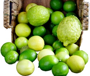 Limes & Lemons (Photo by Cynthia Nelson)