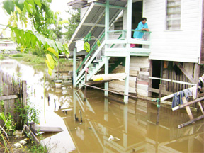 Halima Sadick stares at the inches of water which has once again accumulated in her Dochfour yard.