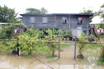 The floodwater in this Felicity yard has risen due to recent heavy rainfall.(Photo by Jules  Gibson)