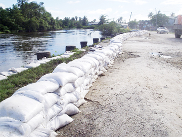 Sandbags placed along the banks of the Mahaica Creek at Belmont. These were placed there on Monday night, residents said. Spring tides over the past few days have resulted in overtopping of the banks of the said creek.