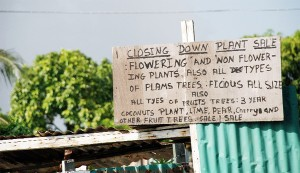 A sign placed at the gate of a resident on the Lamaha Street embankment.