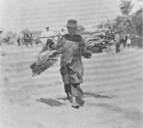 Chinese labourer, circa 1890