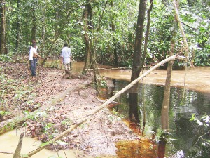 Persons look at the disclolured waters of a creek into which the Arau River has been diverted as it meets the clear water of another creek.