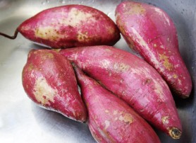 Washed and scrubbed sweet potatoes (Photo  by Cynthia Nelson)
