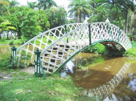 The Kissing Bridge in a section of the Botanical Gardens in Georgetown.
