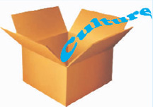 20100904box