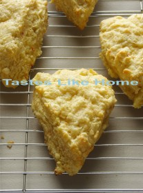 Freshly baked Cheese Scones (Photo by Cynthia Nelson)