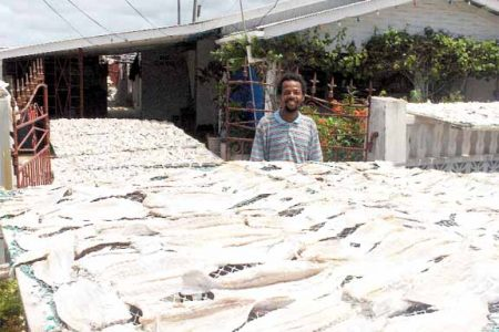 Salted fish being sunned under the watchful eye of a worker