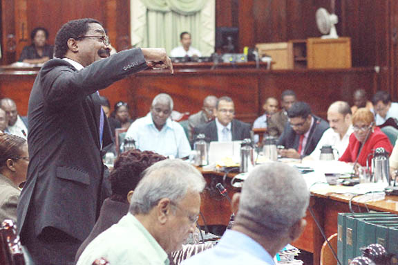 20130111parliament