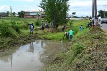 Clearing Thomas Lands weeds (GINA photo)