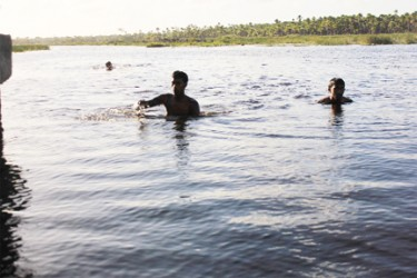 Three boys taking a cool afternoon swim in the black water separating the savannah from Canal No 2