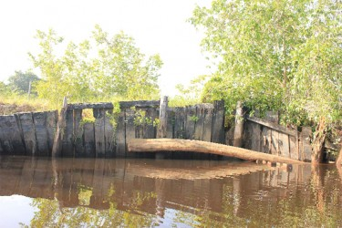 The rotten wooden paaling on the banks of the Torani Canal head which have over time become dislodged and are sliding into the water. (Arian Browne photo)