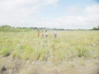 A walk in the savannah at Nappi.