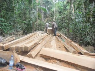 Cutting boards for the Maipaima Lodge.