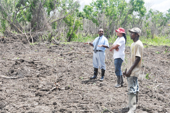 The proposed site for the FIFA Goal Project at Orangestein, East Bank Essequibo.