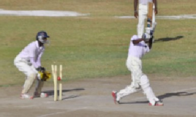 Bernard Bailey is bowled by Troy Benn (not in picture)