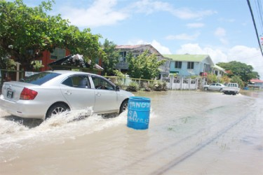 Braving the waters in Subryanville