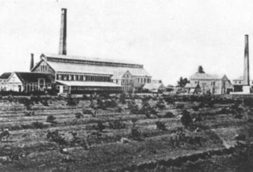 Chateau Margot factory, 19th century