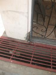 The door from which the hinge was broken off