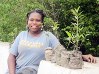 Theola Fortune with a handful of the mangrove seedlings she is currently nursing before they are planted along the Victoria seawall