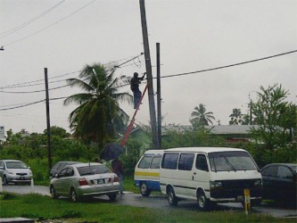 A GPL employee disconnecting illegal wires from an electricity pole in North Sophia