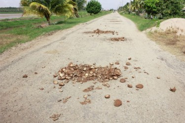 Residents of Maria's Pleasure use coconut shells to fill up pot holes in an effort to reduce some of the damage caused to their cars, buses and motorcycles