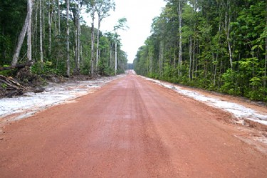 A section of the Amaila Falls Access Road (GINA photo)