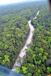 An aerial view of a section of the Amaila Falls Access Road (GINA photo)