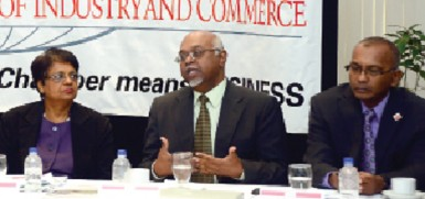 "Donald Baldeosingh, centre, ENMAN Group president, makes a point during Wednesday's conference on ""Trinidad and Tobago – Guyana Connections"" hosted by the Chamber of Commerce at its Westmoorings headquarters. Flanking him are Sandra Indar, permanent secretary, Ministry of Trade, and chamber president Moonilal Lalchan."