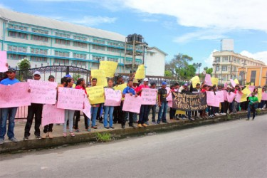 In favour of Amaila: The Progressive Youth Organisation, the youth arm of the ruling PPP, yesterday staged a protest on Brickdam, near Parliament, in favour of the Amaila Falls Hydro Project.  The protest coincided with a sitting of Parliament yesterday. (Arian Browne photo)