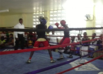 Action between Travis Hubbard and Quincy Boyce on yesterday's final day of the Guyana Amateur Boxing Association Demerara Distillers Limited-sponsored U16 boxing championships at Andrew `Six Head' Lewis Gym.