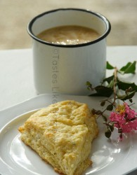 Milo with Cheese Scone (Photo by Cynthia Nelson)