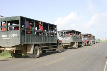 Over 240 Skeldon cane harvestors were en route to the Blairmont estate at approximately 07:30hrs yesterday. For over four weeks Skeldon workers have been asssisting other estates as they wait for their own to commence the second crop harvest