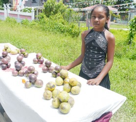 12-year-old Amisha Jaglall assists her  parents to sell fruits that they reaped  from their farm in the backdam