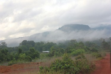 Outskirts of Mahdia in the early morning.