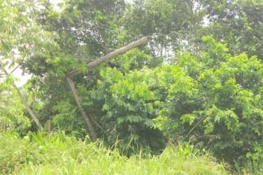 The broken electricity pole at Garden of Eden