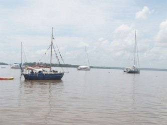 Some of the yachts anchored outside of the Hurakabra Resort on the West Bank of the Essequibo River (GINA photo)