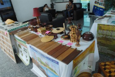 This display of various types of wood found in Guyana was part of the Twenty-Eighth Session of the Latin American and Caribbean Forestry Commission currently underway in Guyana.