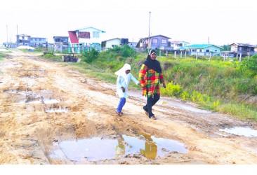 Residents traversing a deplorable street