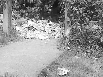 The garbage dumped outside the school's back gate.