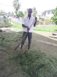 A resident rakes up dried grass