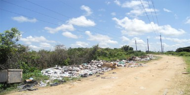 Garbage strewn along the pathway to the GPL sub-station (Photo compliments of GPL)