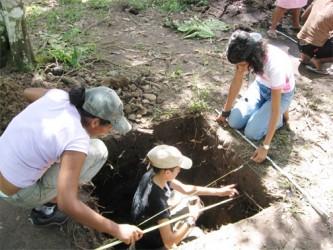 Errol's Landing excavation, Iwokrama