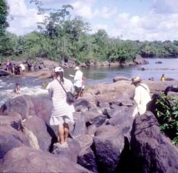 Field survey at Kurupukari, Iwokrama