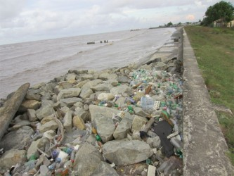 The seawall directly behind the Guyana Sea Defences and Emergency Works Projects compound located at Den Amstel is riddled with garbage and the drainage is almost non-existent. The RDC is charged with ensuring that drainage is feasible if overtopping should occur.