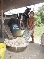 A girl grates cassava to make cassava bread