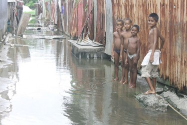 These young boys are forced each day to walk through the water to their home.