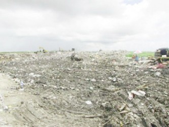 Cell One of the Haags Bosch Landfill Facility. Up to last year, it was noted that the facility was accepting double the daily capacity of waste it was designed to accommodate, which has presented ongoing challenges from the commencement of the project. (GINA photo)