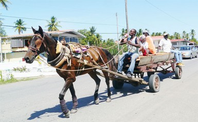 A horse-cart with passengers  passing through the village